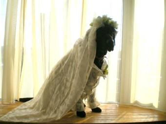 花嫁姿1.jpg