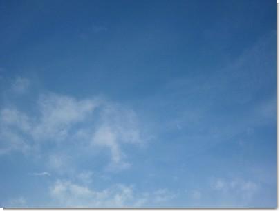 2012-01-12 09.26.39.jpg