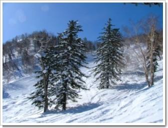 128 冬山の庭園.jpg