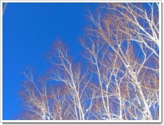 13 青空の向こう.jpg