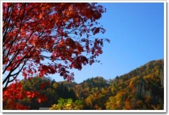 146 色づく山.jpg