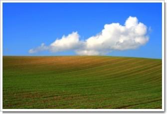 26 丘陵の秋麦.jpg