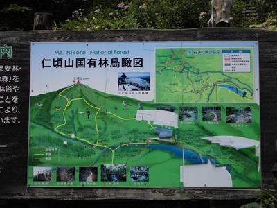 仁頃山国有林鳥瞰図