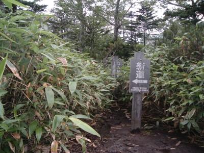 札幌山岳会コマドリ 旧道分岐064.jpg