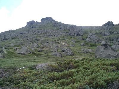札幌山岳会 夏のトムラウシ山頂上直下075.jpg