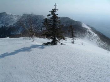 札幌山岳会 熊見山064.jpg