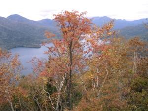 天望山からの然別湖 035.jpg