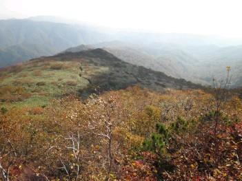 登山道015.jpg