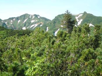 富良野岳 077.jpg